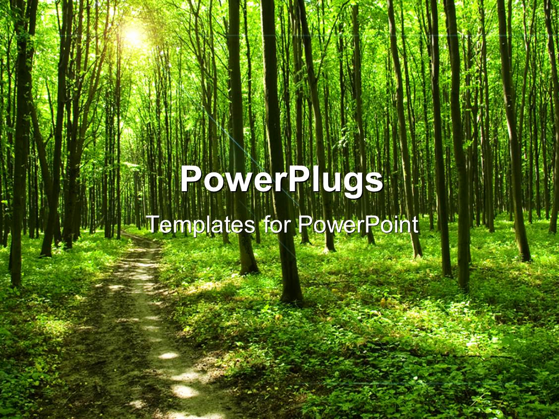 Trees Powerpoint Template for Powerpoint Template Path In Green forest with Huge Trees