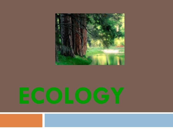 Ecological Ppt or Ppt Ecology Powerpoint Presentation Id