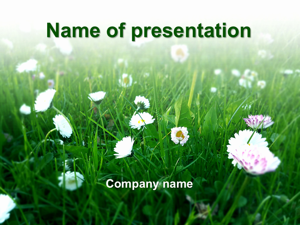 Free Summer Powerpoint Template or Download Free Summer Ing Powerpoint Template for